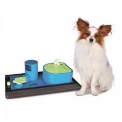 Dog Activity Poker Box Vario 2