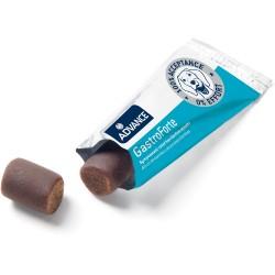 Suplemento Nutricional para perros Gastro Forte 10 gr