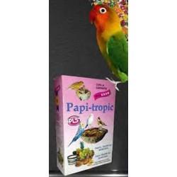 Papi Tropic Pasta de Cría Tropical Morbida