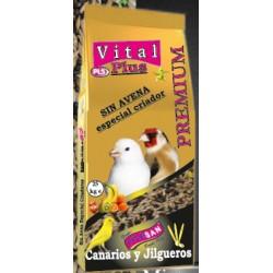 Mixtura Vital Plus Sin Avena Especial Criador para Canarios y Jilgueros