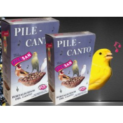 Pile Canto