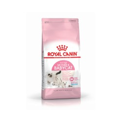 royal canin mother& babycat