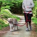 Deporte con tu perro